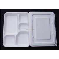 Eco Fiber 11 inch 5-comprment Bento Box 400ct